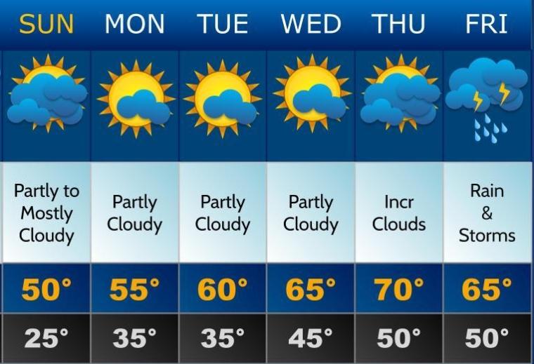 forecast_template-2-1.jpg