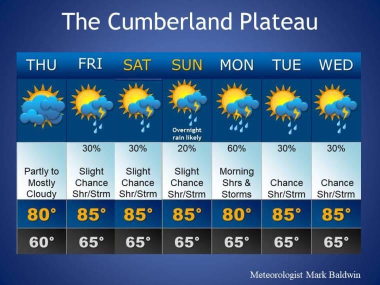 Forecast_Template1