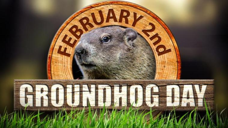 groundhog+hd